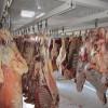 سیستم ثابت پیش سردگذاری لاشه های دام در کشتارگاه شهرستان ابرکوه راه اندازی شد.
